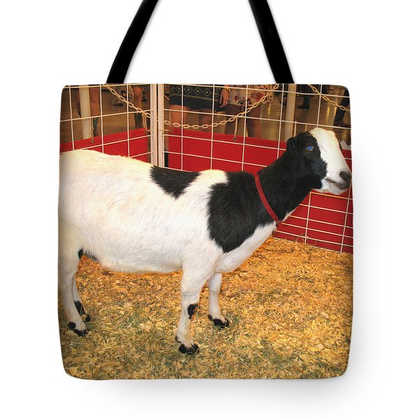 Tote Bag featuring the photograph Who Ate The Walls? Maybe The Blue-eyed Goat by Connie Fox