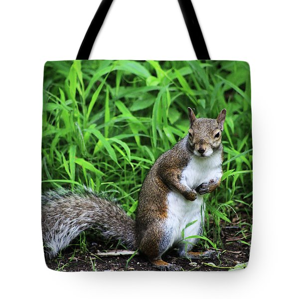 Who Me Tote Bag by Alyce Taylor