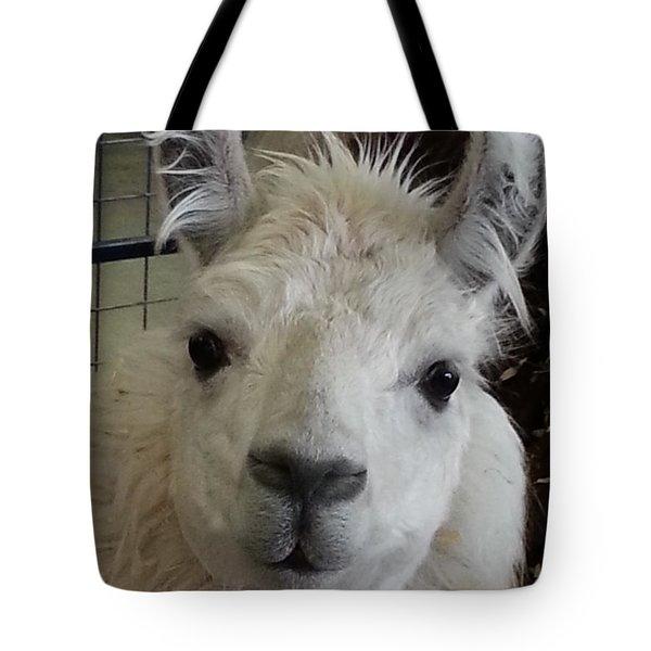 Tote Bag featuring the photograph Who Me Llama by Caryl J Bohn