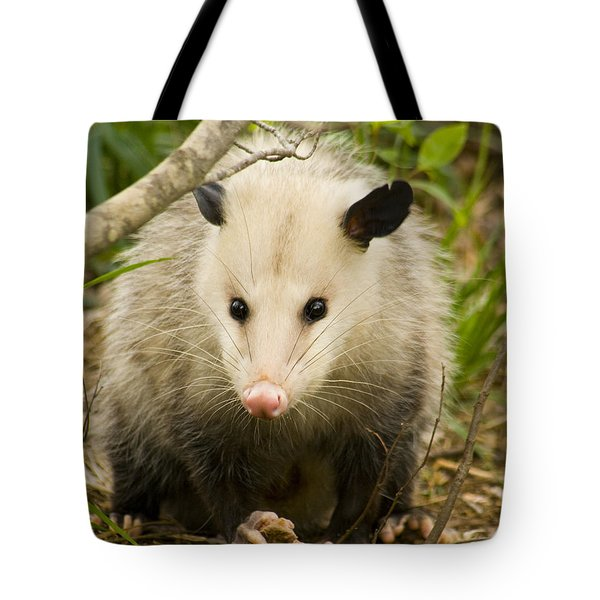 Who Says Possums Are Ugly Tote Bag