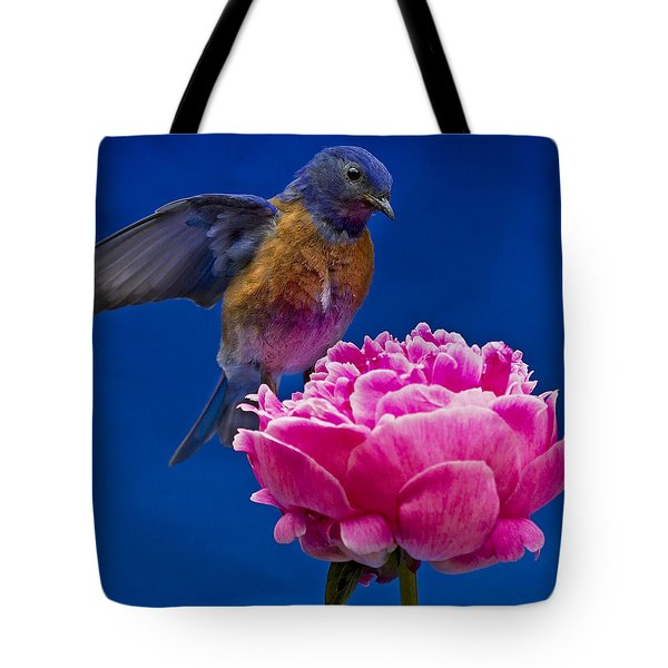 Whoaa Tote Bag by Jean Noren