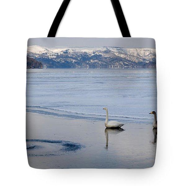 Whooper Swans Cygnus Cygnus On Frozen Tote Bag