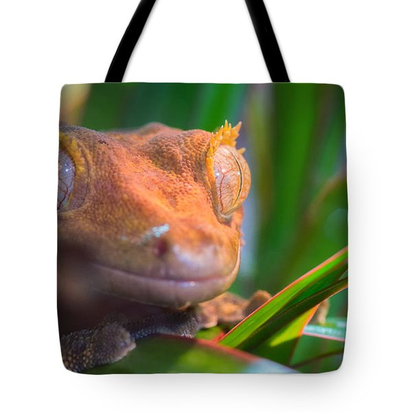 Why Hello0 Tote Bag