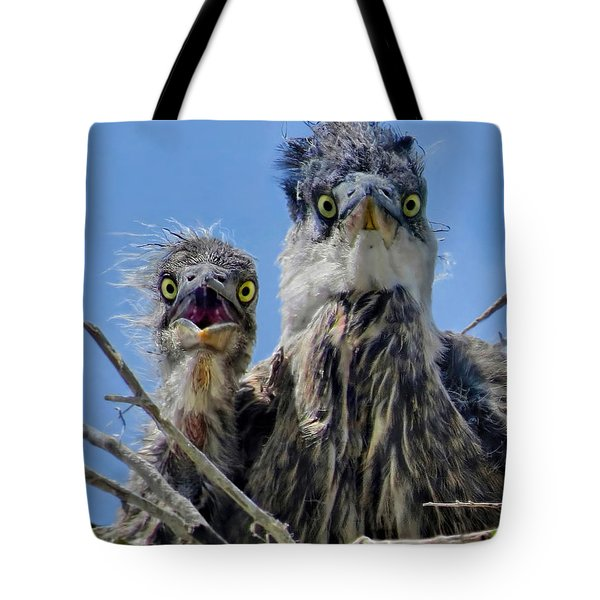 Wide Eyed Baby Herons Tote Bag