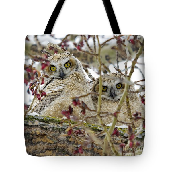 Wide-eyed Wonders Tote Bag