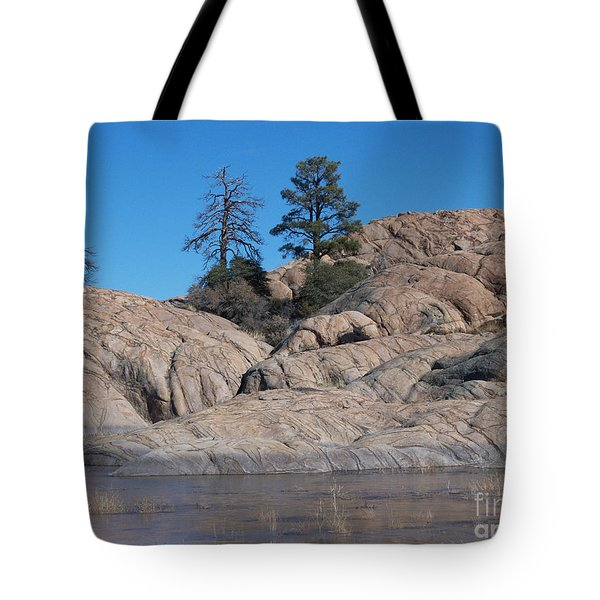Willow Lake Number One Color Tote Bag by Heather Kirk