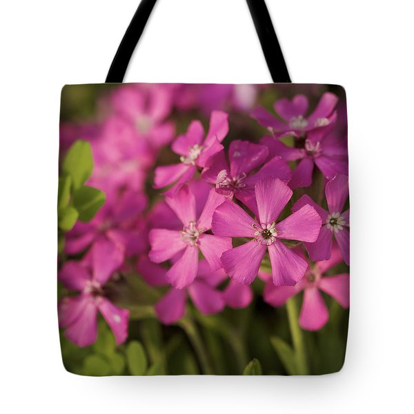 Tote Bag featuring the photograph Wild About Pink - Pink Wildflower Art Print by Jane Eleanor Nicholas