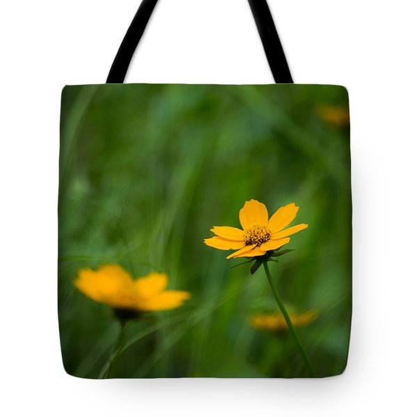 Wild And Free Tote Bag by Shelby  Young