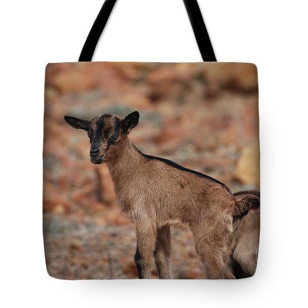 Wild Baby Goat Tote Bag by DejaVu Designs