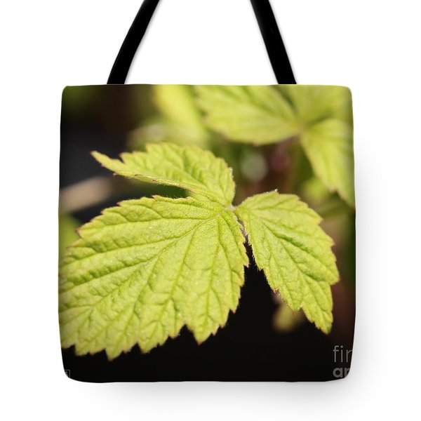 Wild Black Raspberry Leaves Tote Bag by J McCombie