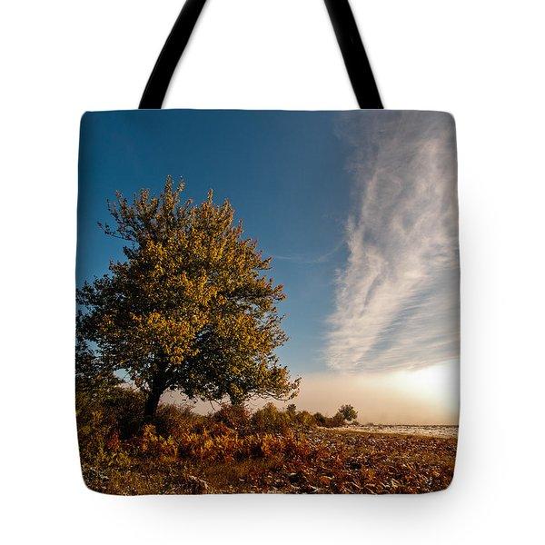 Wild Cherry Tote Bag by Davorin Mance