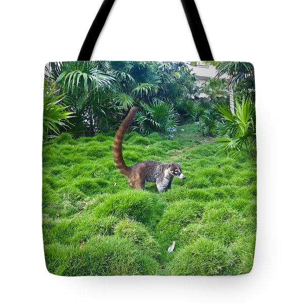 Wild Coati Tote Bag by Eti Reid