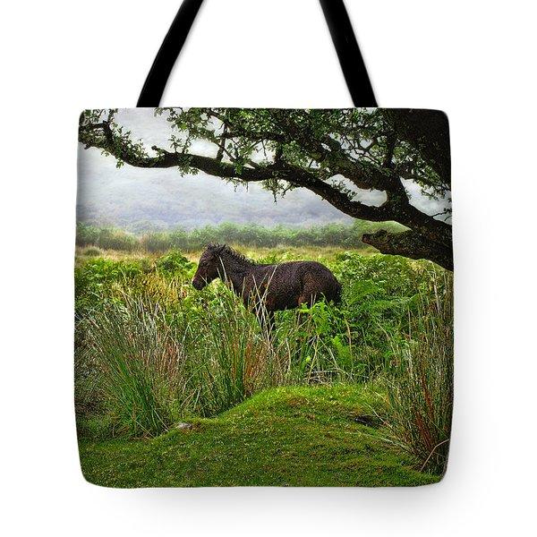 Tote Bag featuring the photograph Wild Dartmoor Foal by Menega Sabidussi