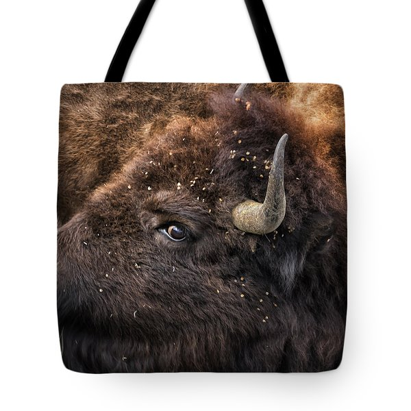 Wild Eye - Bison - Yellowstone Tote Bag