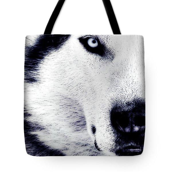 Wild Eyes Tote Bag by VRL Art