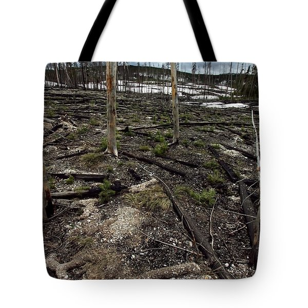 Tote Bag featuring the photograph Wild Fire Aftermath by Amanda Stadther