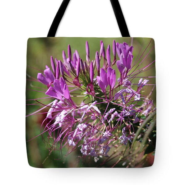 Wild Flower Tote Bag by Cynthia Snyder