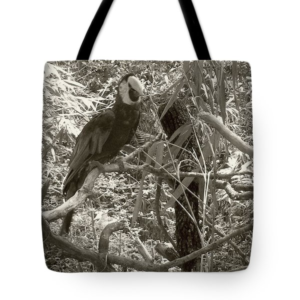 Tote Bag featuring the photograph Wild Hawaiian Parrot Sepia by Joseph Baril