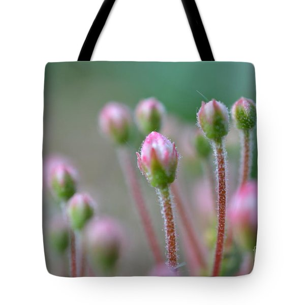 Tote Bag featuring the photograph Wild Honeysuckles by Denise Tomasura
