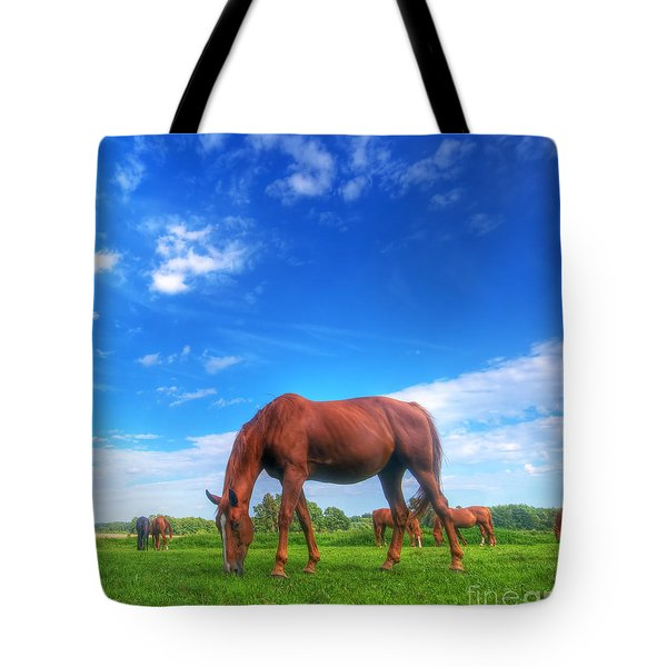 Wild Horse On The Field Tote Bag by Michal Bednarek