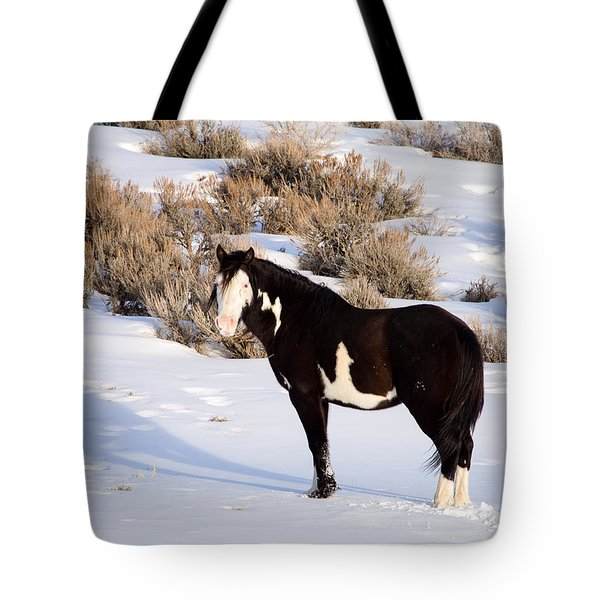 Wild Horse Stallion Tote Bag