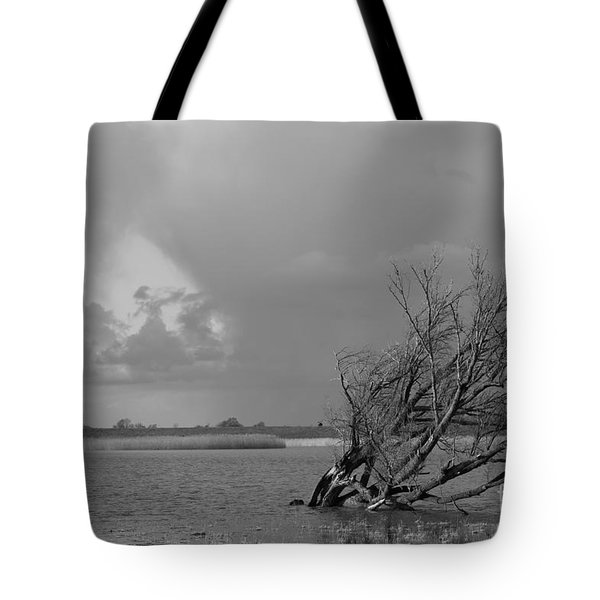 Wild Landscape Tote Bag