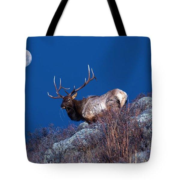 Wild Moon Tote Bag