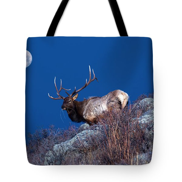 Wild Moon Tote Bag