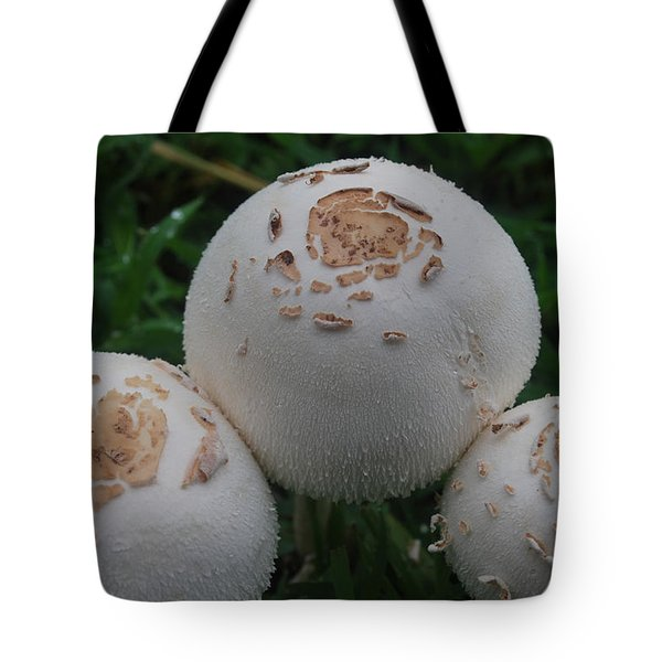 Tote Bag featuring the photograph Wild Mushrooms by Miguel Winterpacht