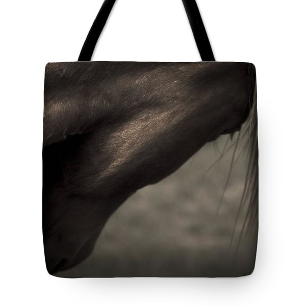 Wild Mustangs Of New Mexico 11 Tote Bag