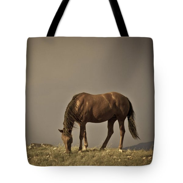 Wild Mustangs Of New Mexico 20 Tote Bag