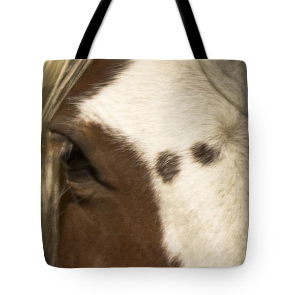 Wild Mustangs Of New Mexico 32 Tote Bag