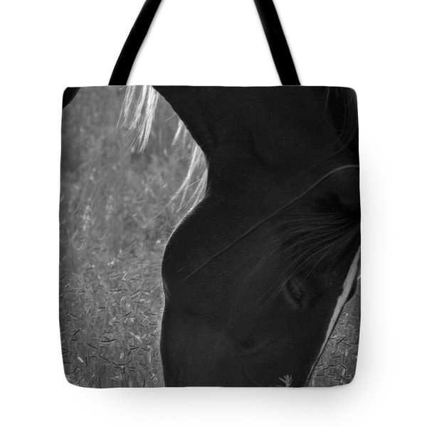 Wild Mustangs Of New Mexico 33 Tote Bag