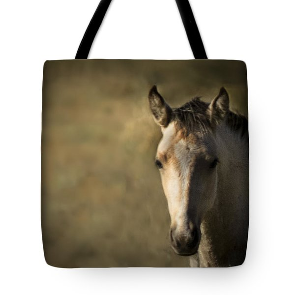 Wild Mustangs Of New Mexico 35 Tote Bag