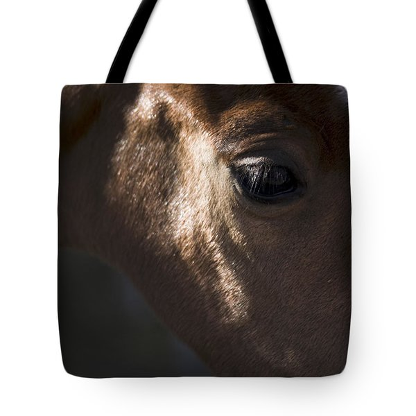 Wild Mustangs Of New Mexico 41  Tote Bag