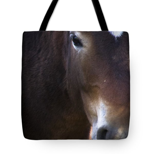 Wild Mustangs Of New Mexico 42 Tote Bag