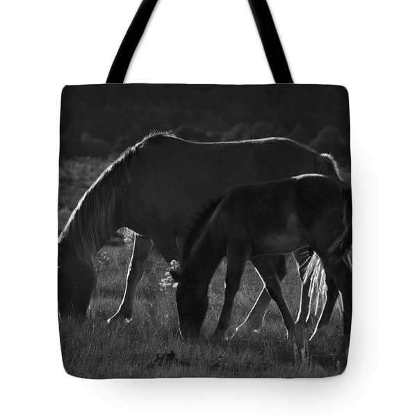Wild Mustangs Of New Mexico 7 Tote Bag