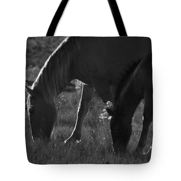 Tote Bag featuring the photograph Wild Mustangs Of New Mexico 7 by Catherine Sobredo