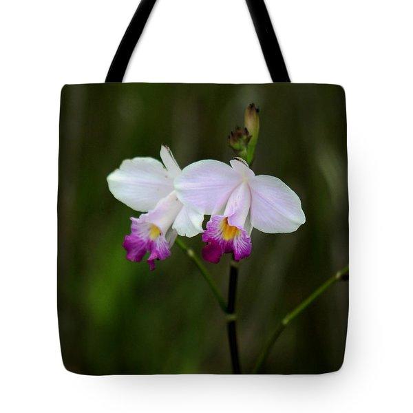 Wild Orchid Tote Bag by Pamela Walton