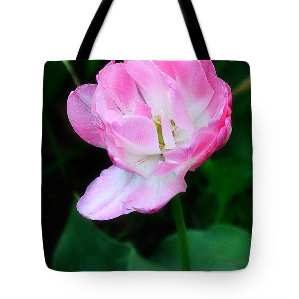 Wild Pink Rose Tote Bag