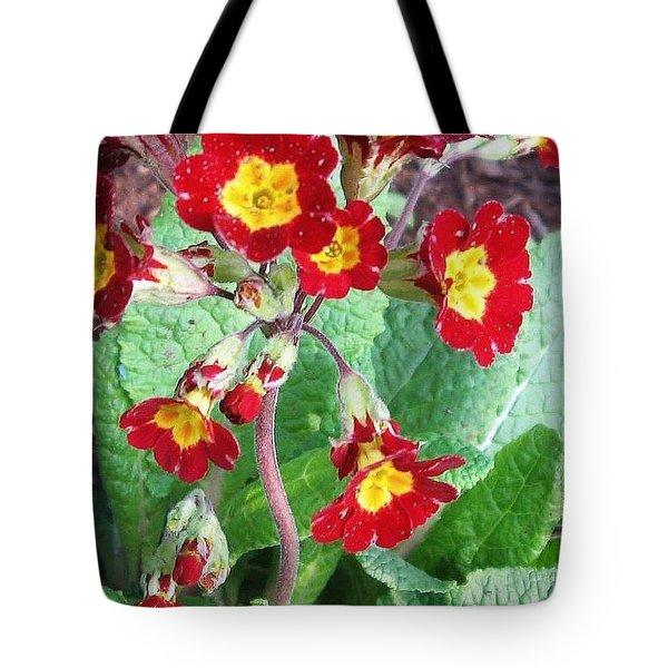 Wild Primroses Tote Bag