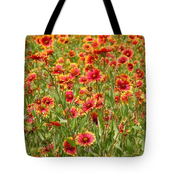 Tote Bag featuring the photograph Wild Red Daisies #1 by Robert ONeil