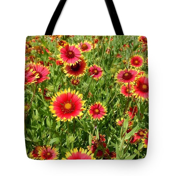 Tote Bag featuring the photograph Wild Red Daisies #4 by Robert ONeil