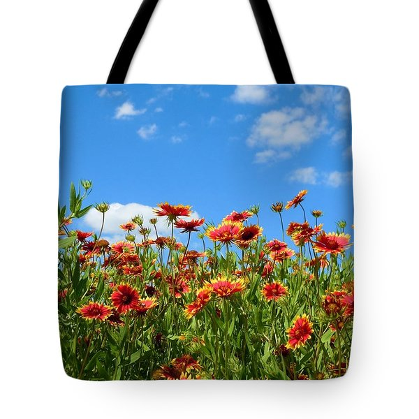 Tote Bag featuring the photograph Wild Red Daisies #5 by Robert ONeil