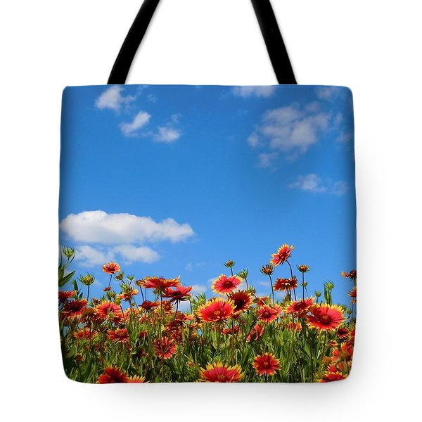 Tote Bag featuring the photograph Wild Red Daisies #6 by Robert ONeil