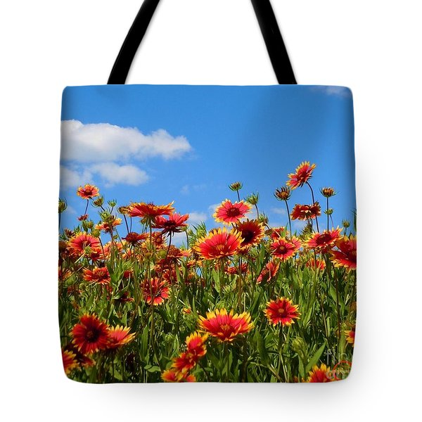 Tote Bag featuring the photograph Wild Red Daisies #7 by Robert ONeil