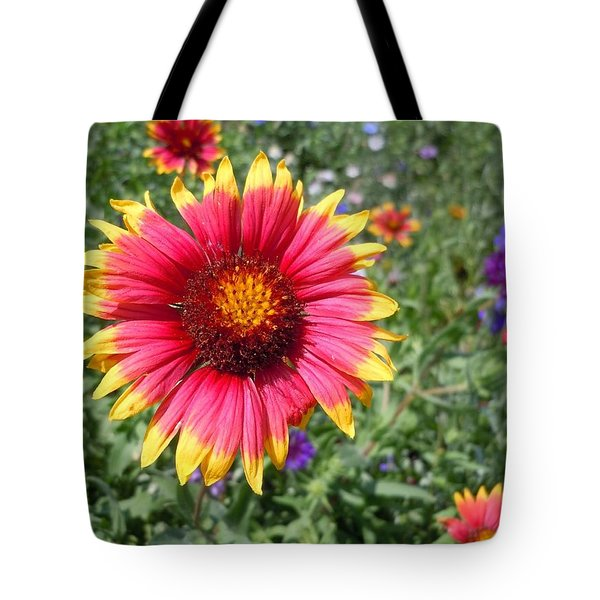 Tote Bag featuring the photograph Wild Red Daisy #1 by Robert ONeil