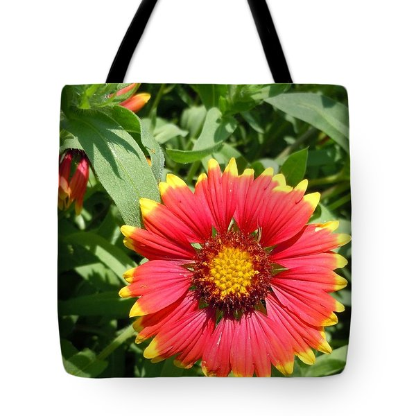 Tote Bag featuring the photograph Wild Red Daisy #2 by Robert ONeil