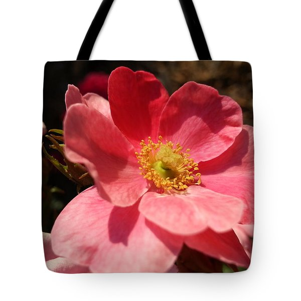 Tote Bag featuring the photograph Wild Rose by Caryl J Bohn