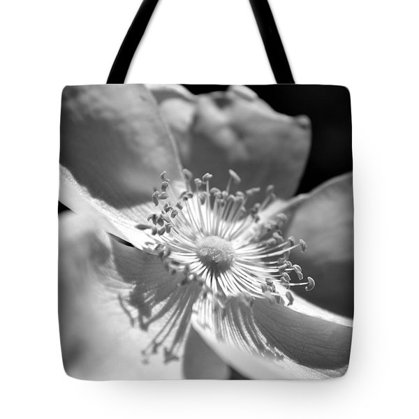 Wild Rose Tote Bag by Kelly Nowak